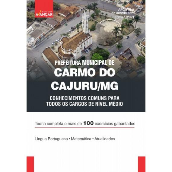 Prefeitura de Carmo do Cajuru MG - Conhecimentos Comuns a Todos os Cargos de Nível Médio - Ebook