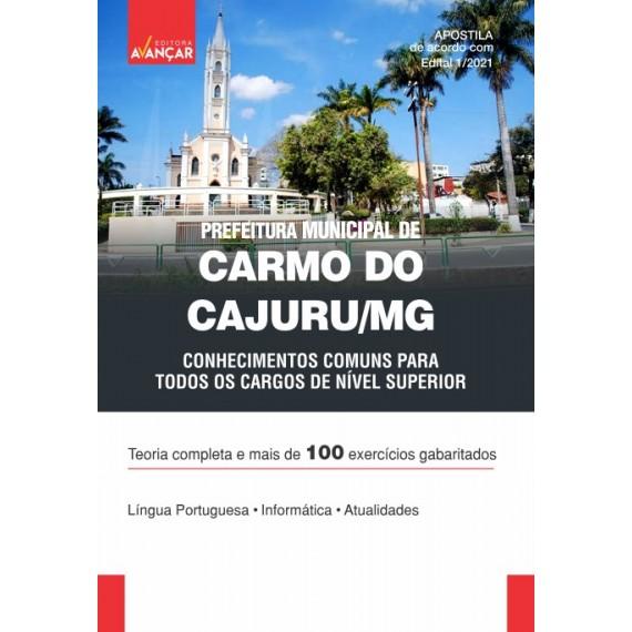Prefeitura de Carmo do Cajuru MG - Conhecimentos Comuns a Todos os Cargos de Nível Superior - Ebook