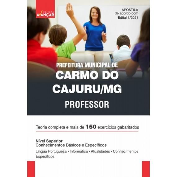 Prefeitura de Carmo do Cajuru MG - Professor - Ebook